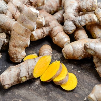 Fresh Yellow Turmeric